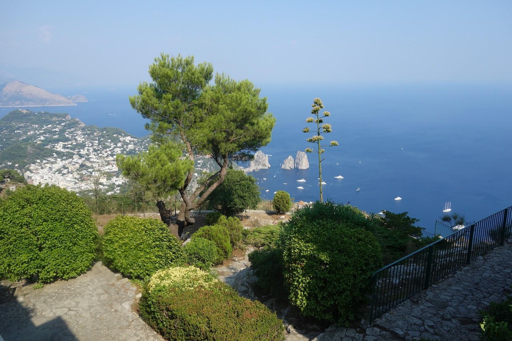 Auf Capri, auf dem Monte Solaro