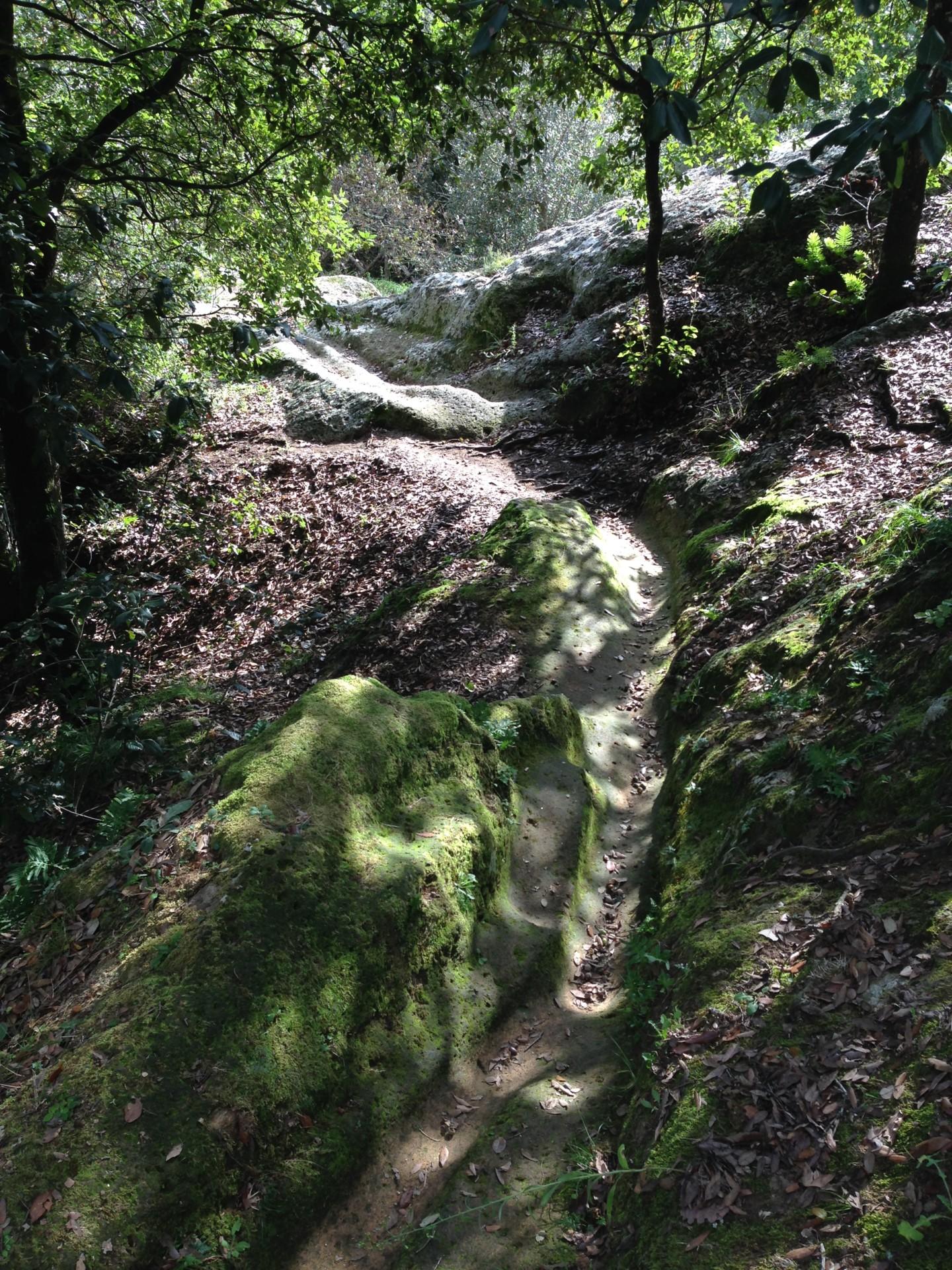 Sorano, Weg zu den Grotte di San Rocco
