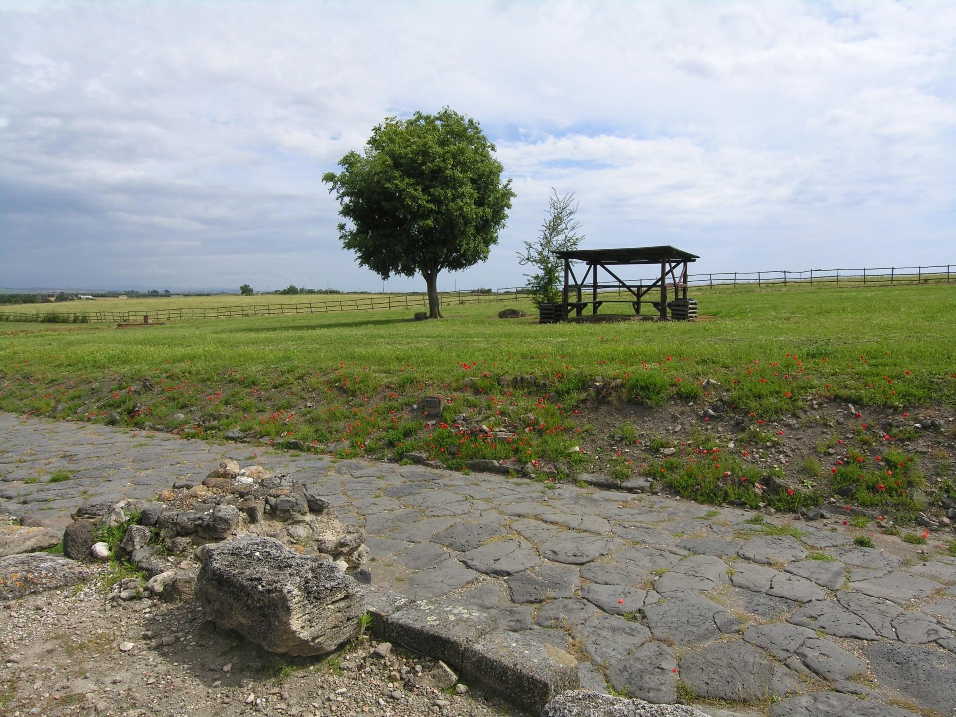 Dtruskisch römische Strasse in Vulci