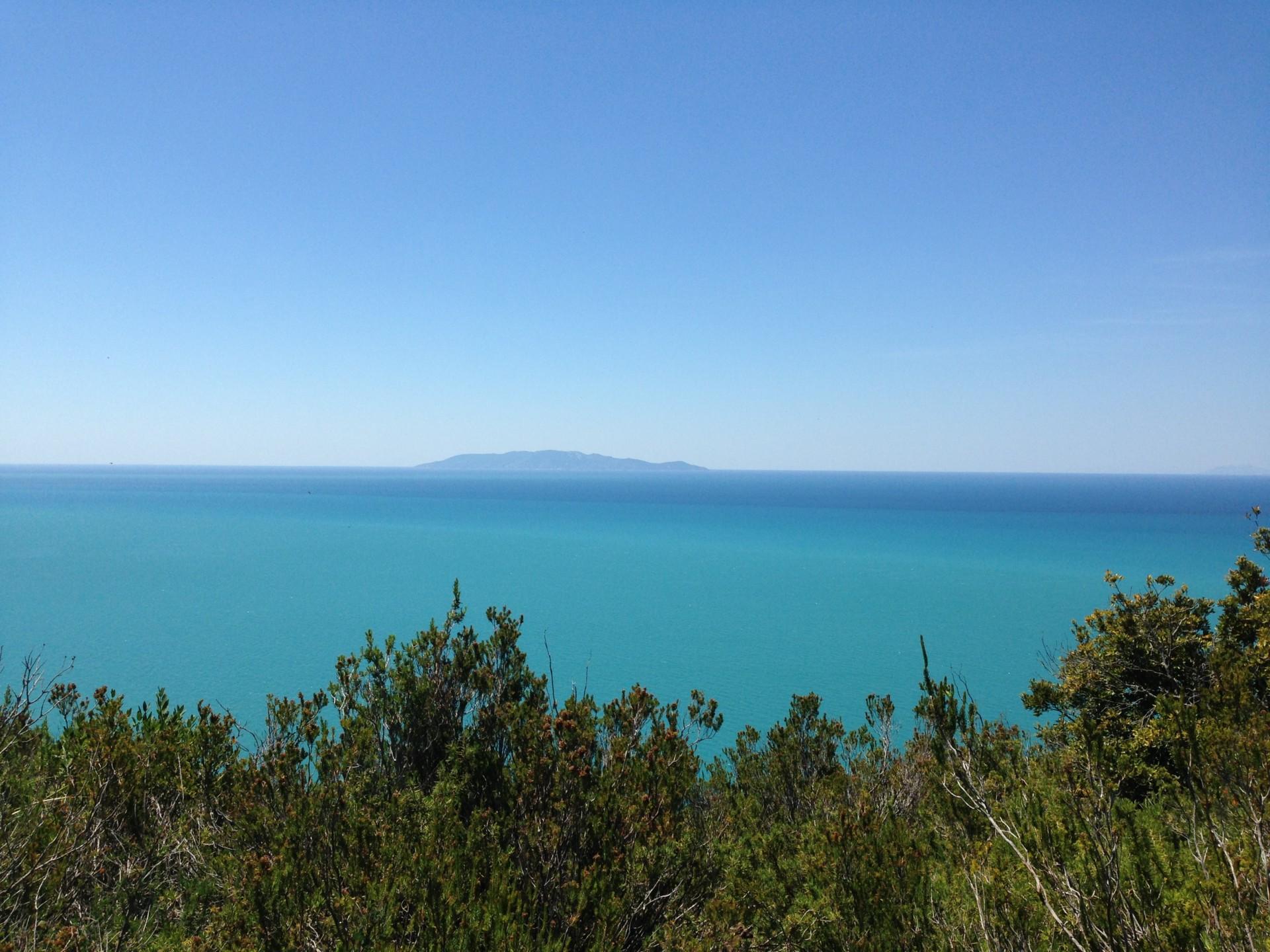 Talamone, im Naturpark, Blick auf Giglio