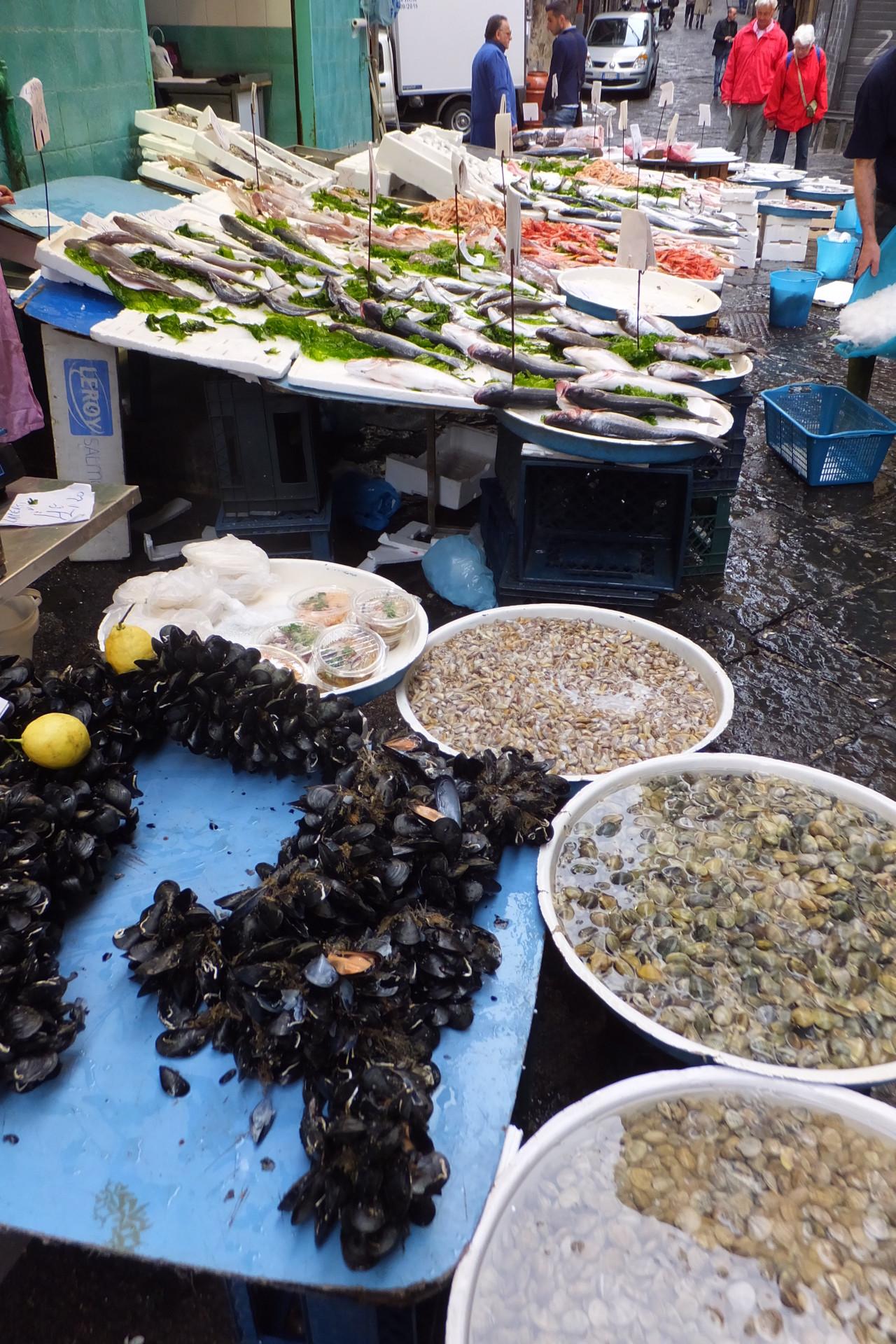 Pignasecca - Fischmarkt