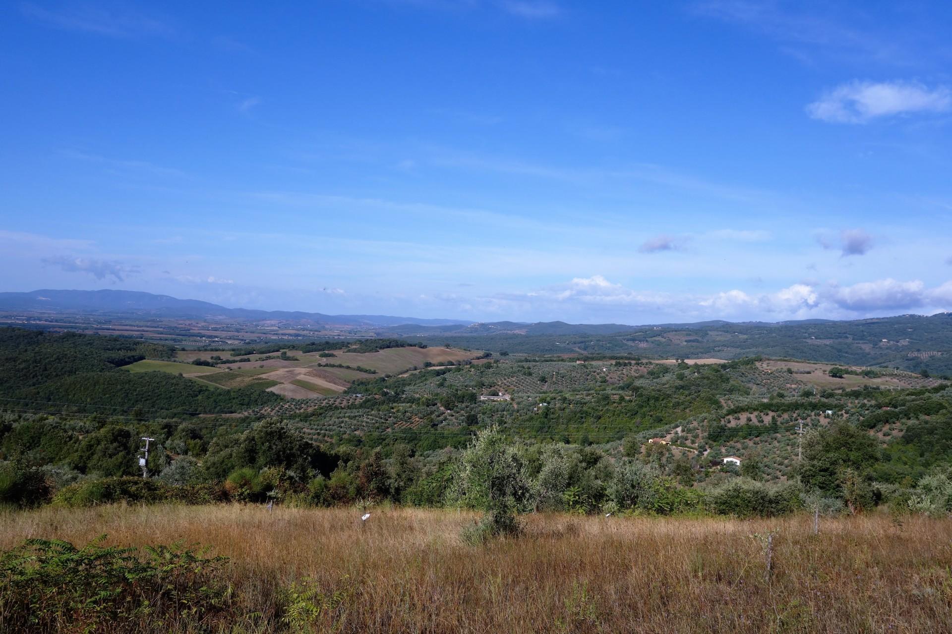 Blick über Land bei Roccastrada
