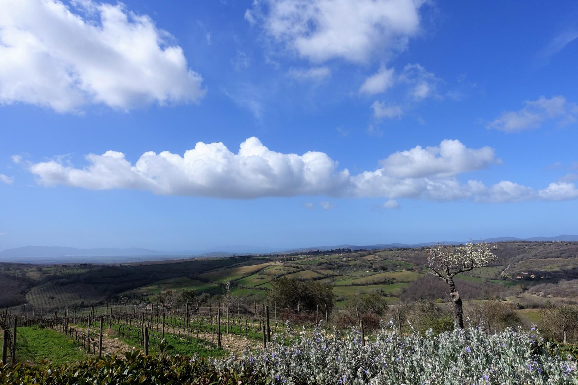 La Capitana, Blick nach Norden