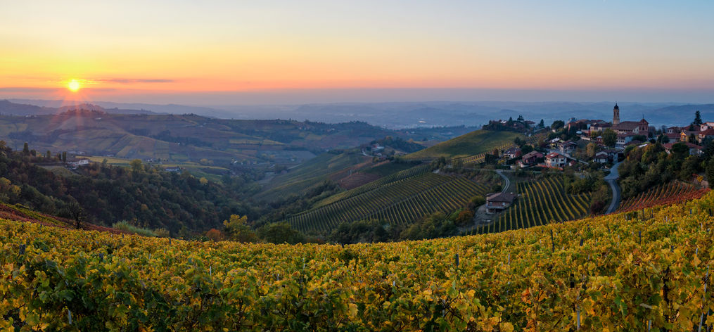 66274159 - le langhe - treiso and landscape in autumn colors at sunset
