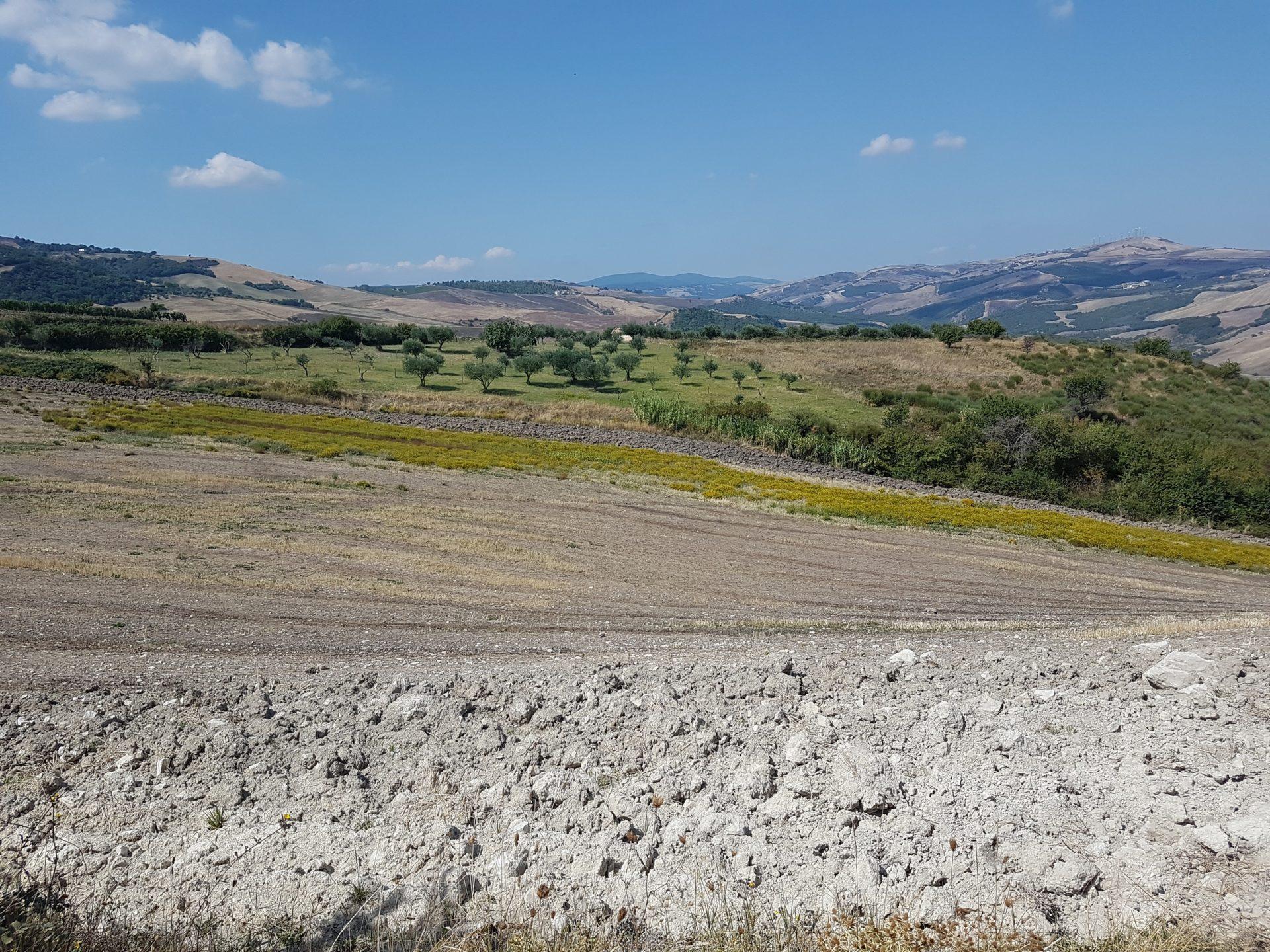 Auf dem Weg zum Castel del Monte, noch Basilicata