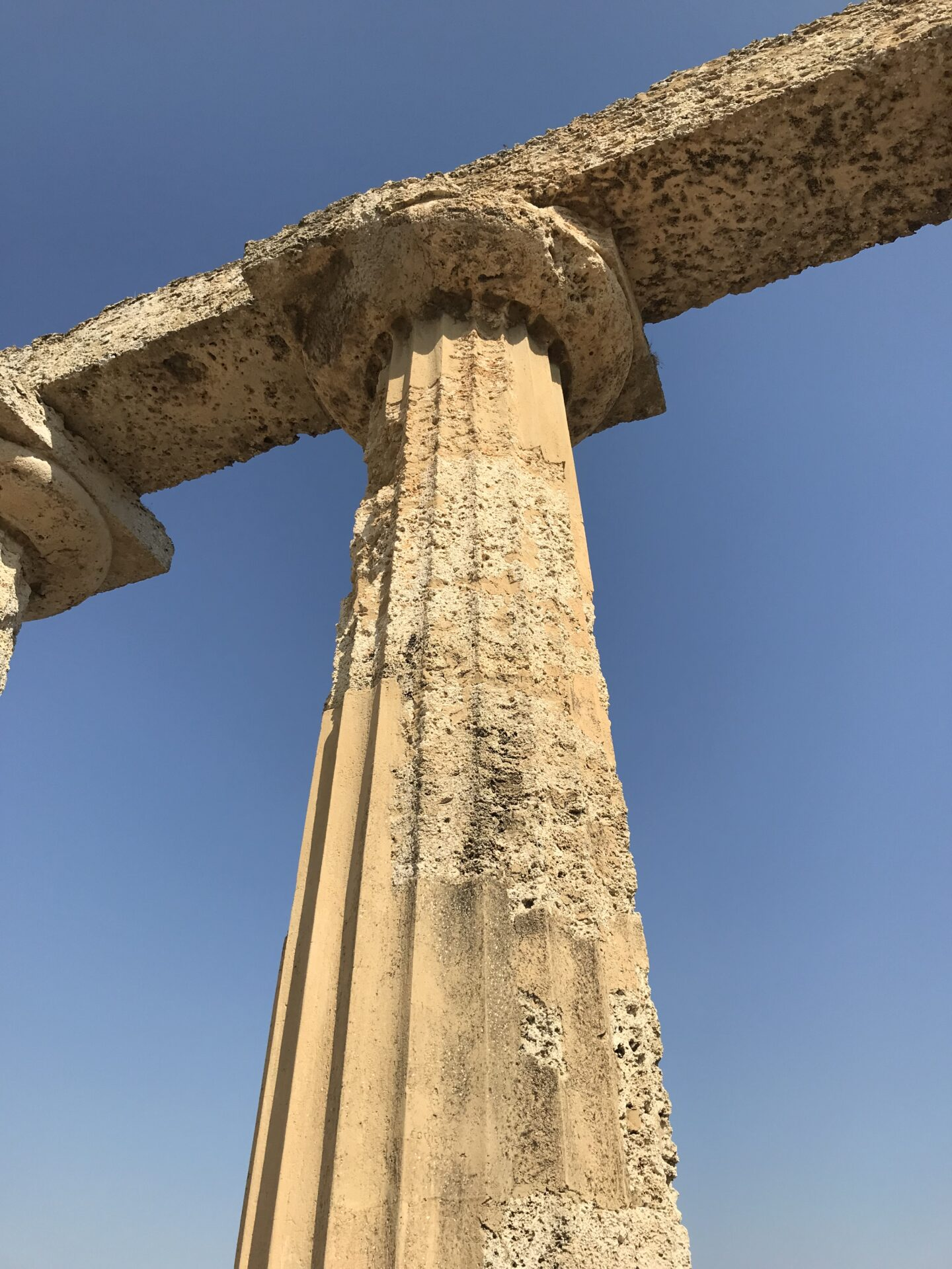 tavole palatine in Metaponto eine der Säulen des griechischen Hera-Tempels